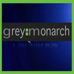 Grey-Monarch_Supplier_Adsotech_698x698